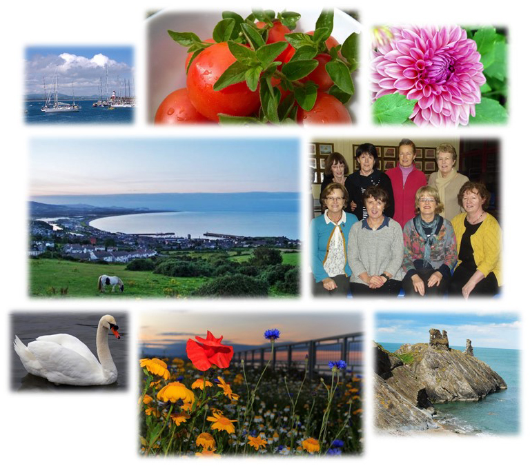Views of Wicklow Town and ICA Wicklow Town members as well as flowers and fruit